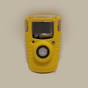 Bw H2S Monitor