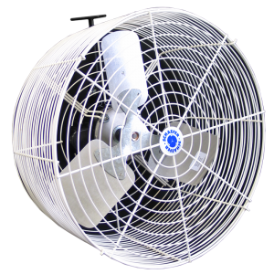 Fixed Mount Circulation Fans