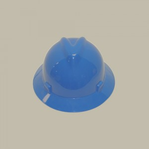 Hard Hats in Assorted Colors